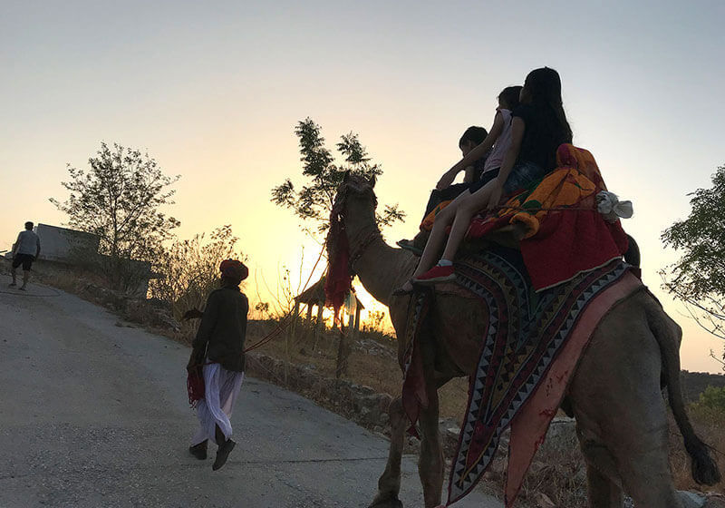 Shrinath Green Valley camel ride